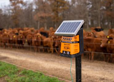 electrificadores compactos solares plyrap